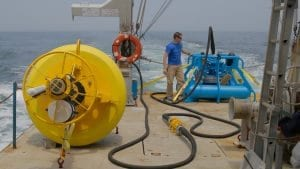 Scientists Now Listening for Whales in New York Waters With Real-time Acoustic Buoy
