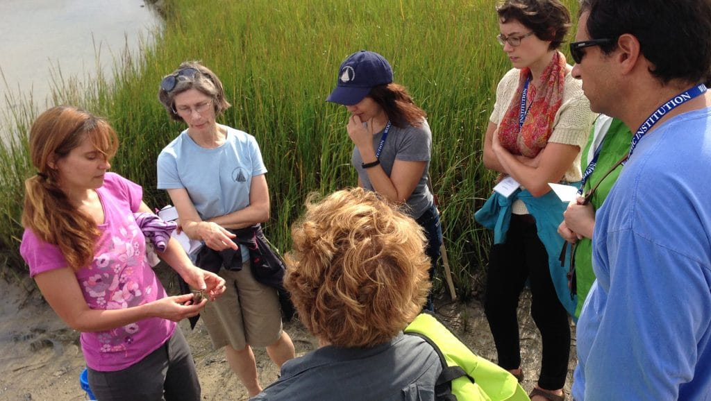 WHOI Announces 2016 Ocean Science Journalism Fellows