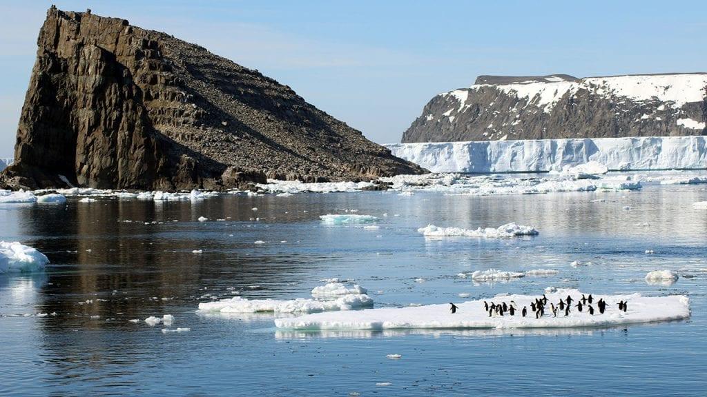 Danger-Islands-penguins-ice_485133.jpg