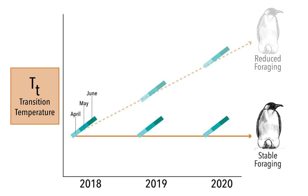 Penguin-Graph-(years)_Master-01_490555.jpg