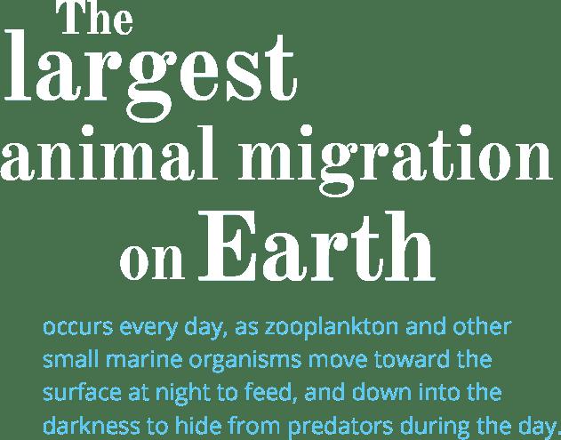 kyo-migration