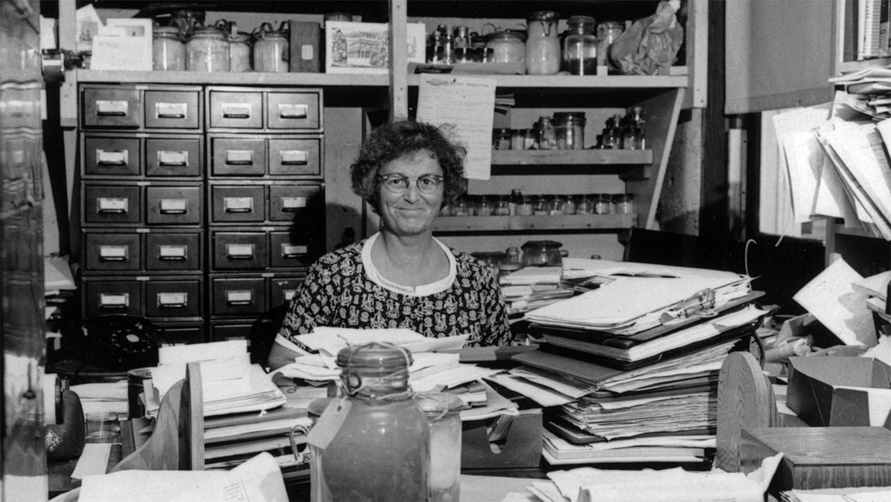 In this 1960 photo, Mary Sears is surrounded by papers and biological samples in her Bigelow Laboratory office. (Woods Hole Oceanographic Institution Archives)