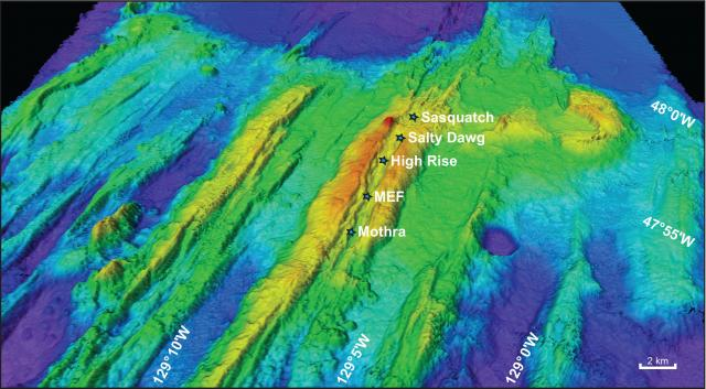 The names of hydrothermal vent fields along the Endeavour segment of the Juan de Fuca ridge.