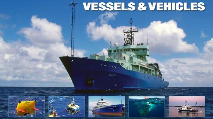 BP-vessels