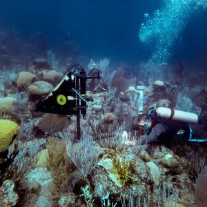 c03dc24e1be 2019 Potential Projects - Woods Hole Oceanographic Institution