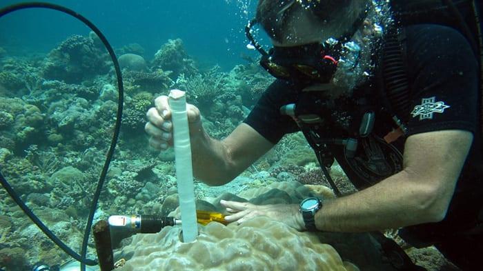 Dive Program