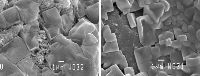 At the microscopic level, blocks of calcium carbonate crystals in conch shells can dissolve away in more acidic conditions caused by high carbon dioxide (CO2). The conch on the right, reared under CO2 levels in today's atmosphere, produced a shell with orderly blocks of crystals, while the conch on the left, grown under 2,850 ppm CO2 conditions, produced irregular, disordered blocks with etched surfaces. (Micrograph by Justin Ries, Woods Hole Oceanographic Institution)