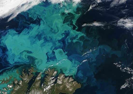 A huge plankton bloom swirls in Arctic waters off Norway. Even simple life like plankton occurs in complex patterns. BIOMAPER was invented for studying these patterns in detail. (photo by NASA's Visible Earth program)
