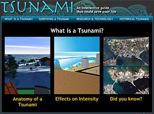 Interactive Tsunami Guide