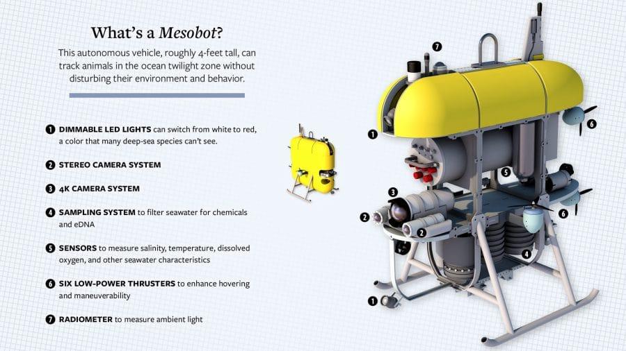 mesobot-web2_514913.jpg