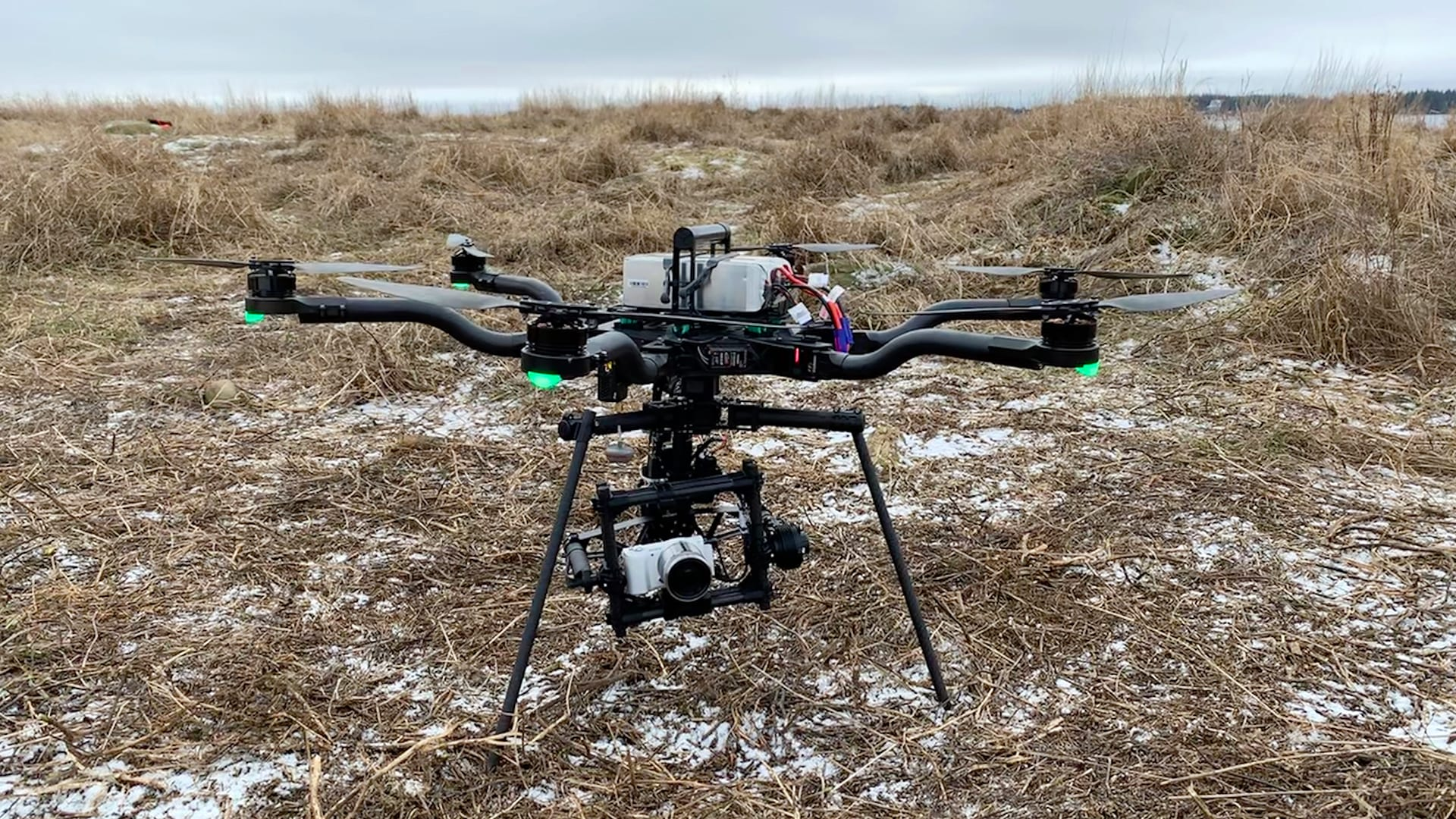 A hexacopter-style drone with a three-foot wingspan provided Shero with aerial photographs of the mum-and-pup seal pairs. Photo by Michelle Shero