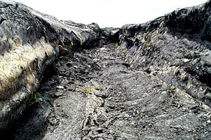 Lava channel on Kilauea volcano, Hawaii. Scale across the channel is about 5 meters.