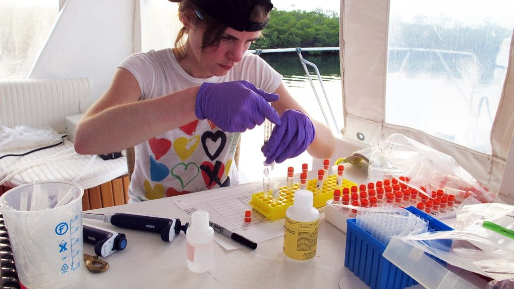 Laura Weber processes the seawater samples aboard the research vessel in Jardines de la Reina, Cuba. (Photo by Amy Apprill, Woods Hole Oceanographic Institution)