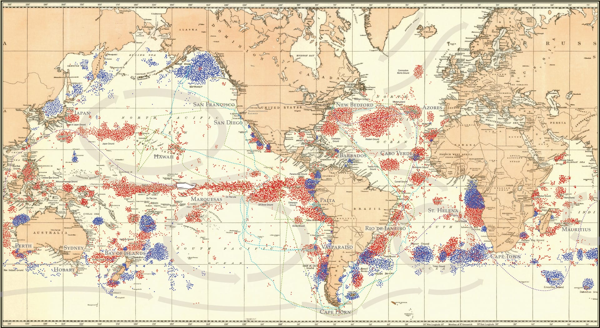 Whalers from New England covered a wide span of the globe, often traveling to remote locations that merchant and military vessels didn't venture to. This composite whaling map, collated from four original maps prepared under the direction of Charles Haskins Townsend, shows the historical distribution of various types of whales taken by New England/American whaling ships between 1785-1913. Each color represents the position of a ship on a day when one or more whales were taken. (Image courtesy of the New Bedford Whaling Museum)