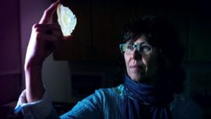 WHOI Senior Scientist Joan Bernhard holds a synthetic model of a foram species known as Astrammina