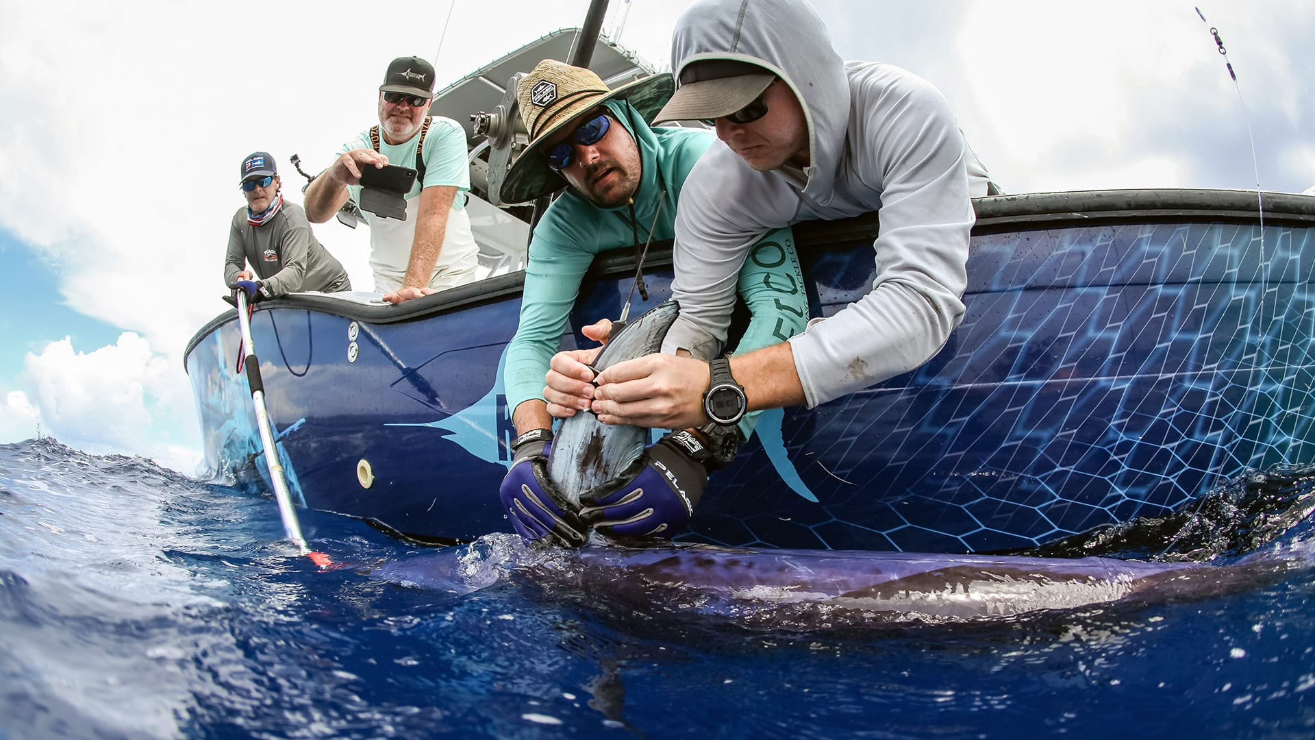 University of Washington ceanographers Peter Gaube (wearing purple gloves) and Camrin Braun (far right) attach a satellite tag on a swordfish in August 2019 off the coast of Florida. (Photo by Steve Dougherty Photography)