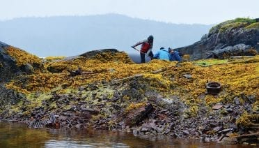In 2018, researchers from WHOI and their collaborators from Haverford College collected oil samples from the 1989 Exxon Valdez spill deposited on the shores of McClure Bay in Prince William Sound, Alaska. (Photo by Anna Michel, © Woods Hole Oceanographic Institution)