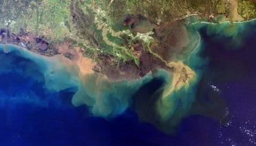 """Low-oxygen """"dead zones"""" and phytoplankton blooms like those shown here extending into the Gulf of Mexico are expanding in the global ocean due to a variety of factors, including climate disruptions, warmer ocean temperatures, and increasing nutrient runoff from fertilizers and wastewater on land. (Image courtesy of the National Atmospheric and Oceanic Administration)."""