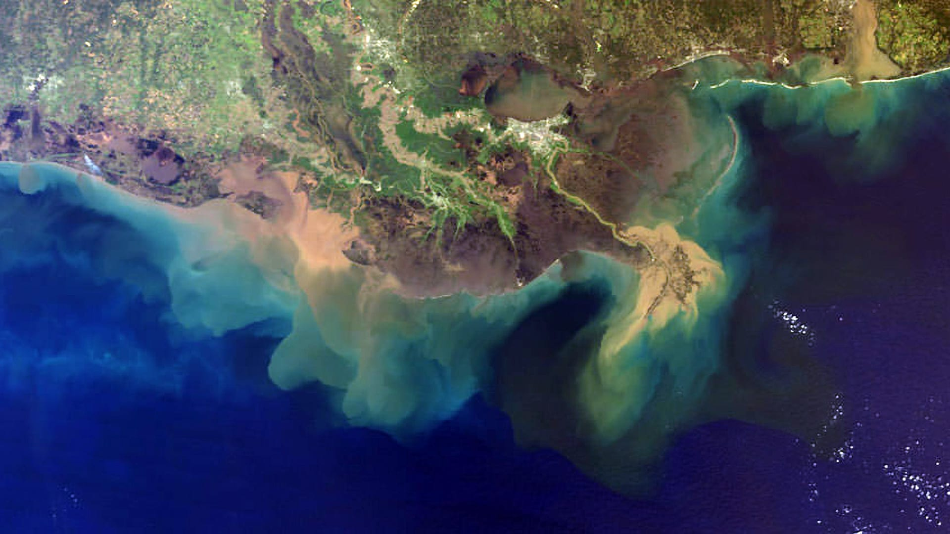 "Low-oxygen ""dead zones"" and phytoplankton blooms like those shown here extending into the Gulf of Mexico are expanding in the global ocean due to a variety of factors, including climate disruptions, warmer ocean temperatures, and increasing nutrient runoff from fertilizers and wastewater on land. (Image courtesy of the National Atmospheric and Oceanic Administration)."