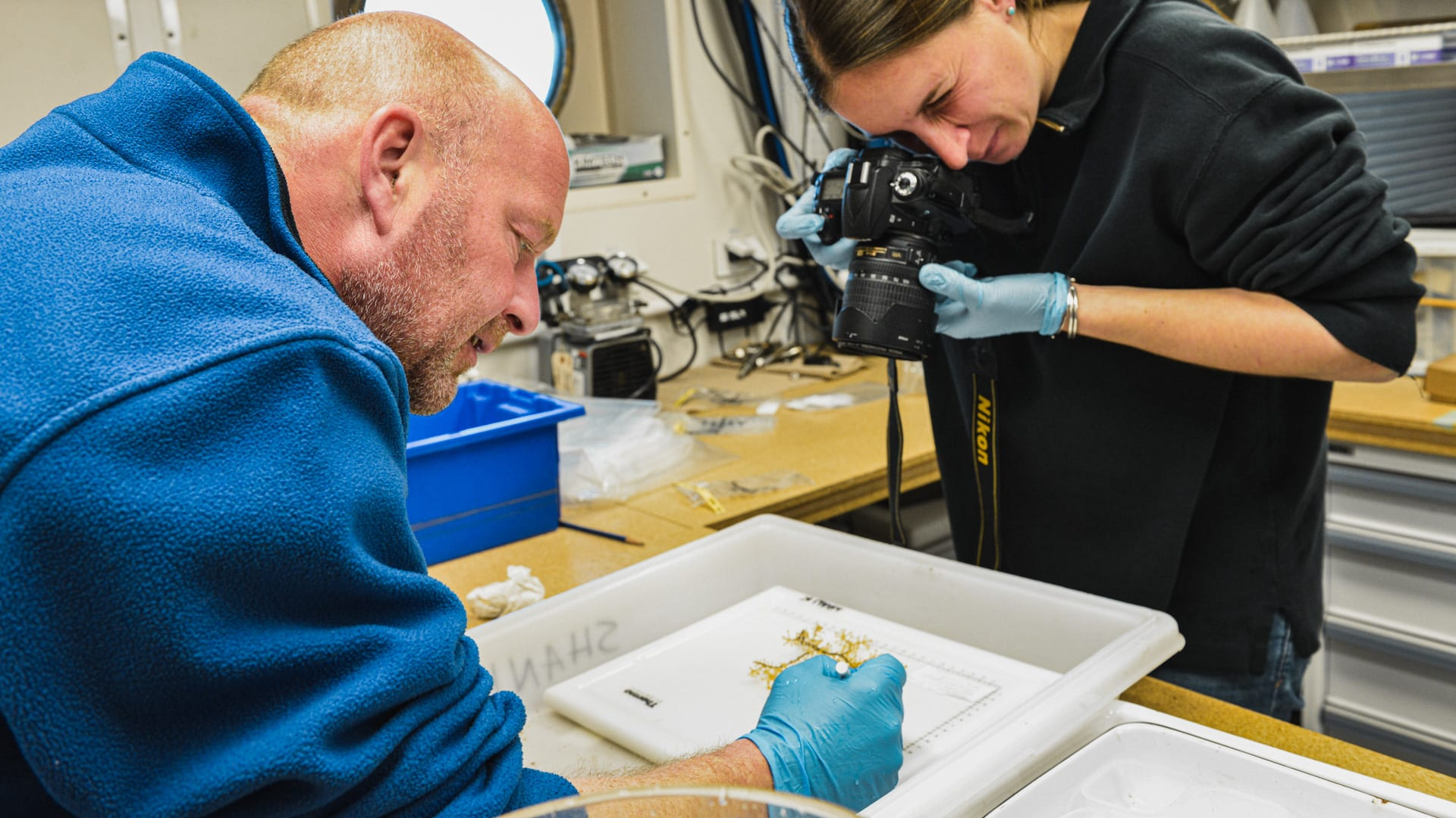 WHOI biologists Tim Shank and Taylor Heyl process coral samples to determine biodiversity in Atlantis Canyon, 100 miles from Woods Hole, Mass. (Photo by Ken Kostel, © Woods Hole Oceanographic Institution)
