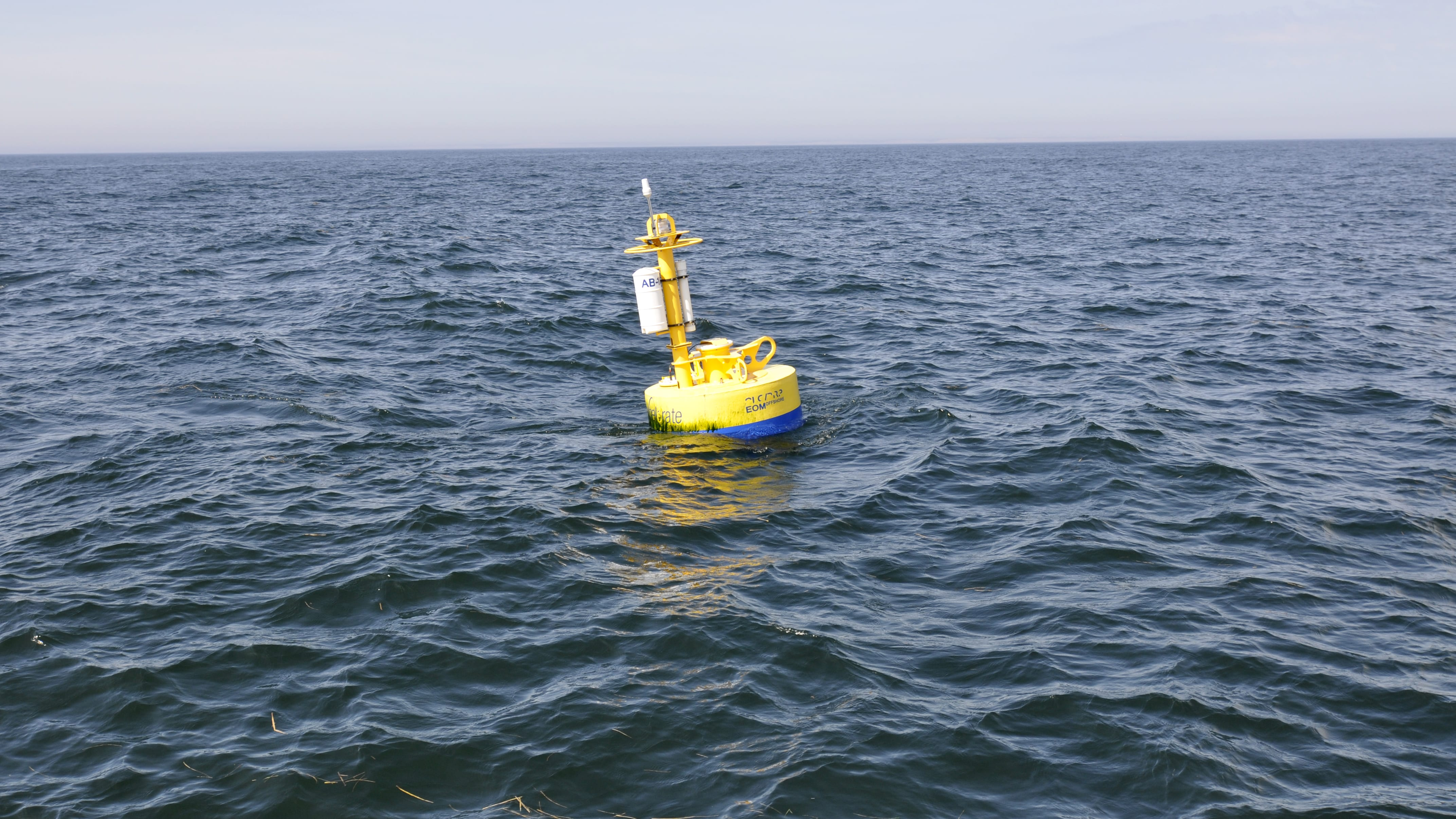 whale detection buoy on surface