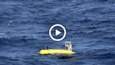 DeepwaterEcoMesobotPlayThumbs (1)