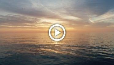 SunrisePlayThumbs