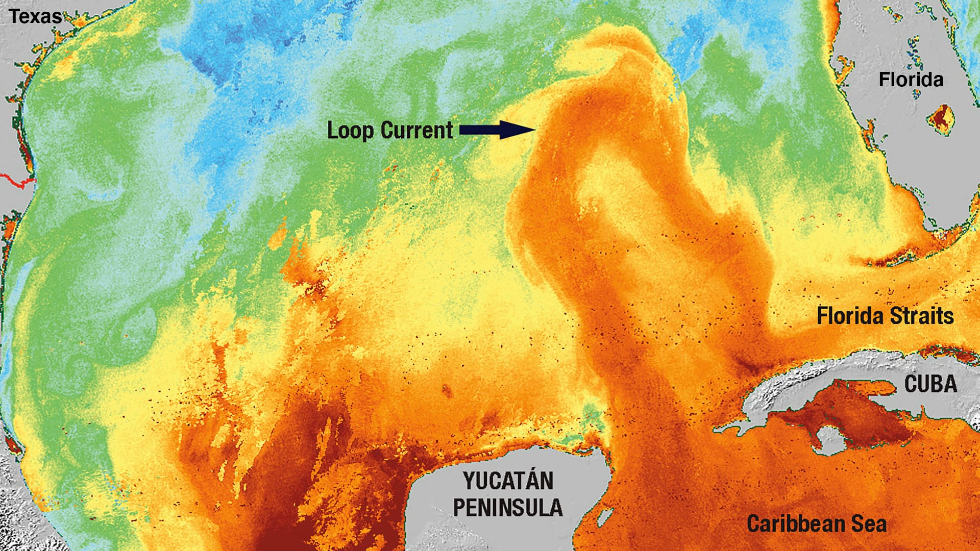 The Loop Current (orange) is like a big river of warm water that flows northward from the Caribbean Sea. It sometimes loops up close to Louisiana and then swoops back down through the Florida Straits and into the Atlantic Ocean. (Sea surface temperature image by the Ocean Remote Sensing Group, © Johns Hopkins University Applied Physics Laboratory)