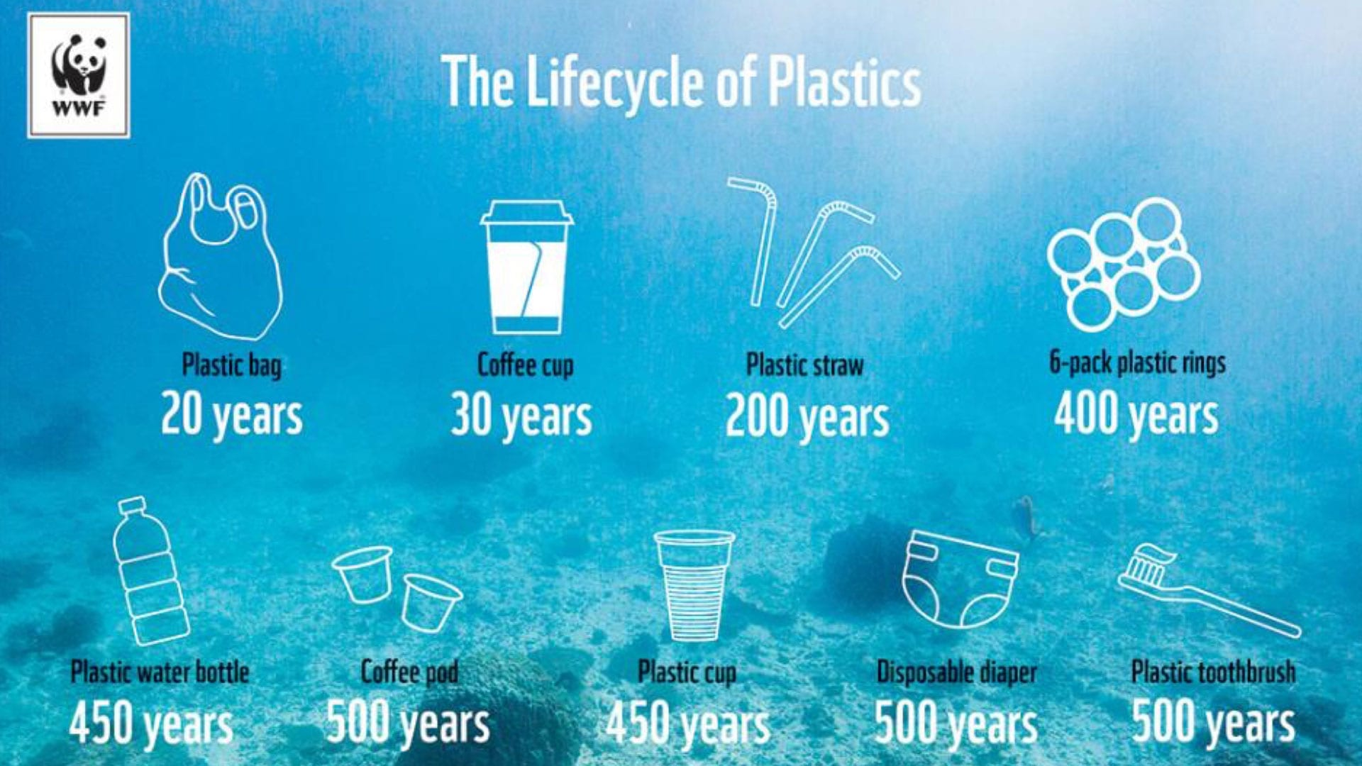 Lifecycle of plastics