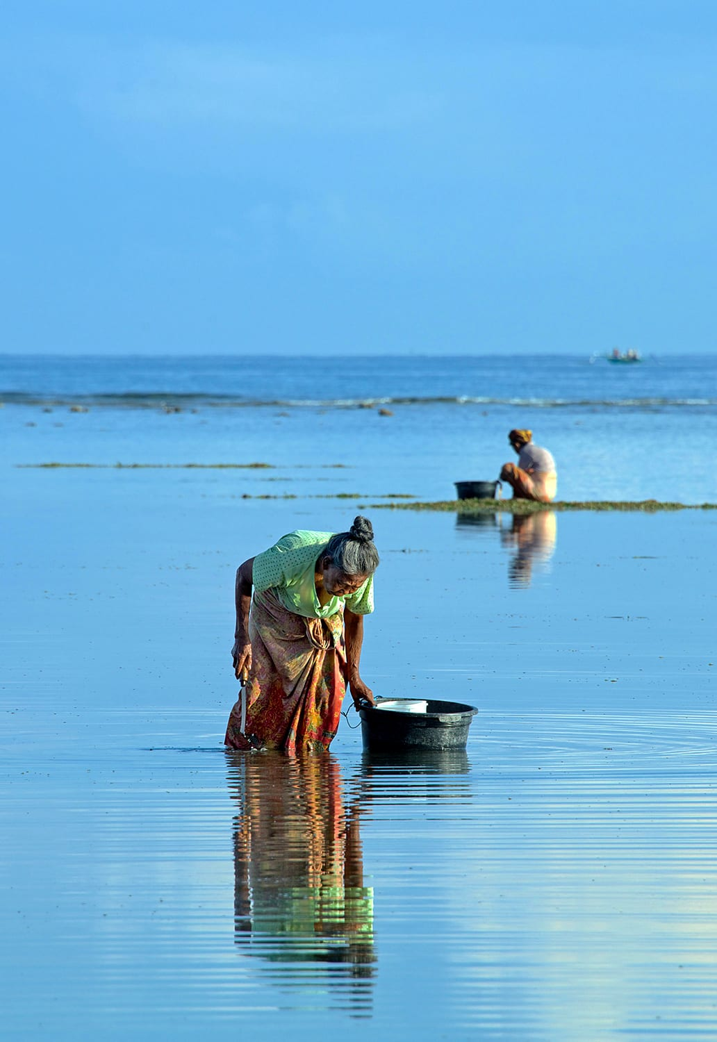 Women collecting shellfish in Lombok, Indonesia. (Photo by A. David South © Alamy)