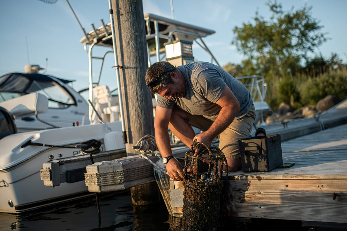 Shellfish farmer Dan Ward pulls up an Imaging FlowCytobot (IFCB) from one of his shellfish beds in Falmouth, Massachusetts. The instrument takes up to 12 photos of plankton cells per second, and uses specialized algorithms to identify harmful algal species that produce toxins. (Photo by Daniel Hentz, © Woods Hole Oceanographic Institution)