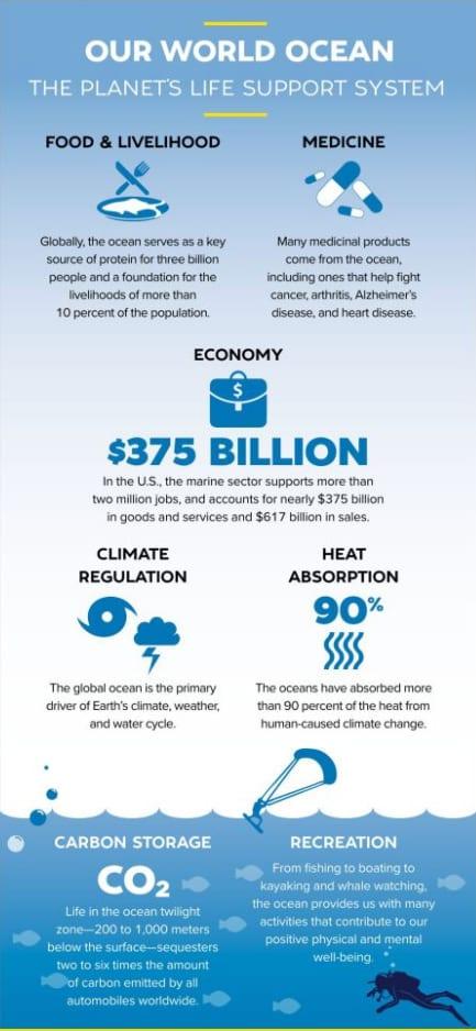 Ocean Bounty Infographic