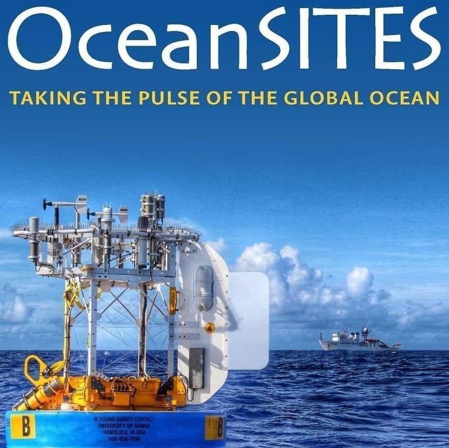 OceanSITEScroppedbrochurecover