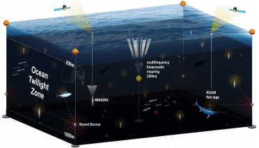 An ocean network from Woods Hole Oceanographic Institution will give scientists a comprehensive view of the twilight zone, or mesopelagic, using several different technologies including moored buoys equipped with acoustic survey systems; a swarm of optical and geochemical sensors; and new fish-tracking tags that will continuously record the position of major predators such as sharks and tuna. All of these components will connect to the network's buoys using acoustic signals underwater and an Iridium satellite link at the surface.