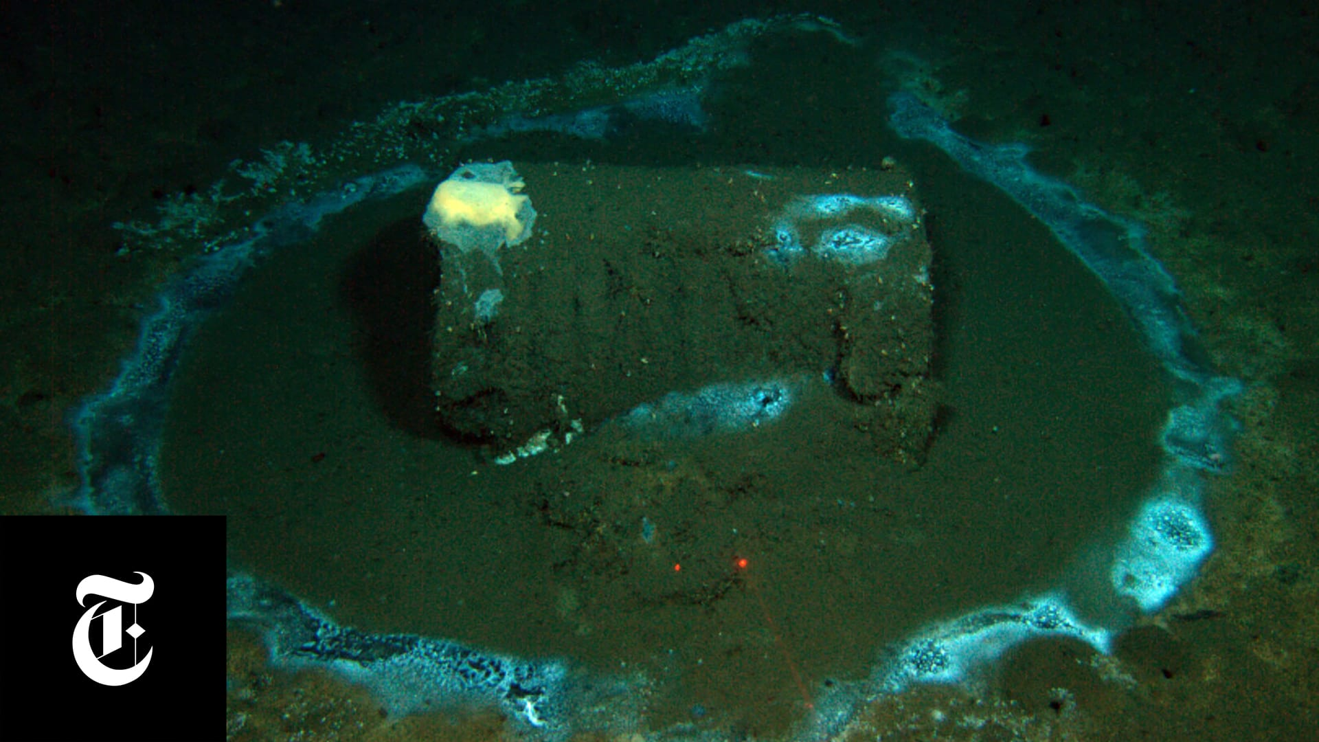 A rusting DDT barrel is seen through cameras on ROV <em>Jason</em>(Photo courtesy of David Valentine / U.C. Santa Barbara / ROV Jason)