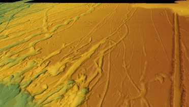 These 3D perspective views of the seafloor bathymetry from multibeam sonar offshore of South Carolina show numerous grooves carved by drifting icebergs. As iceberg keels plow into the seafloor, they dig deep grooves that push aside boulders and piles of sand and mud along their tracks. Sediment cores from nearby buried iceberg scours were used to determine when these icebergs travelled south along the coast.  Credit: Jenna Hill, U.S. Geological Survey, Pacific Coastal & Marine Science Center