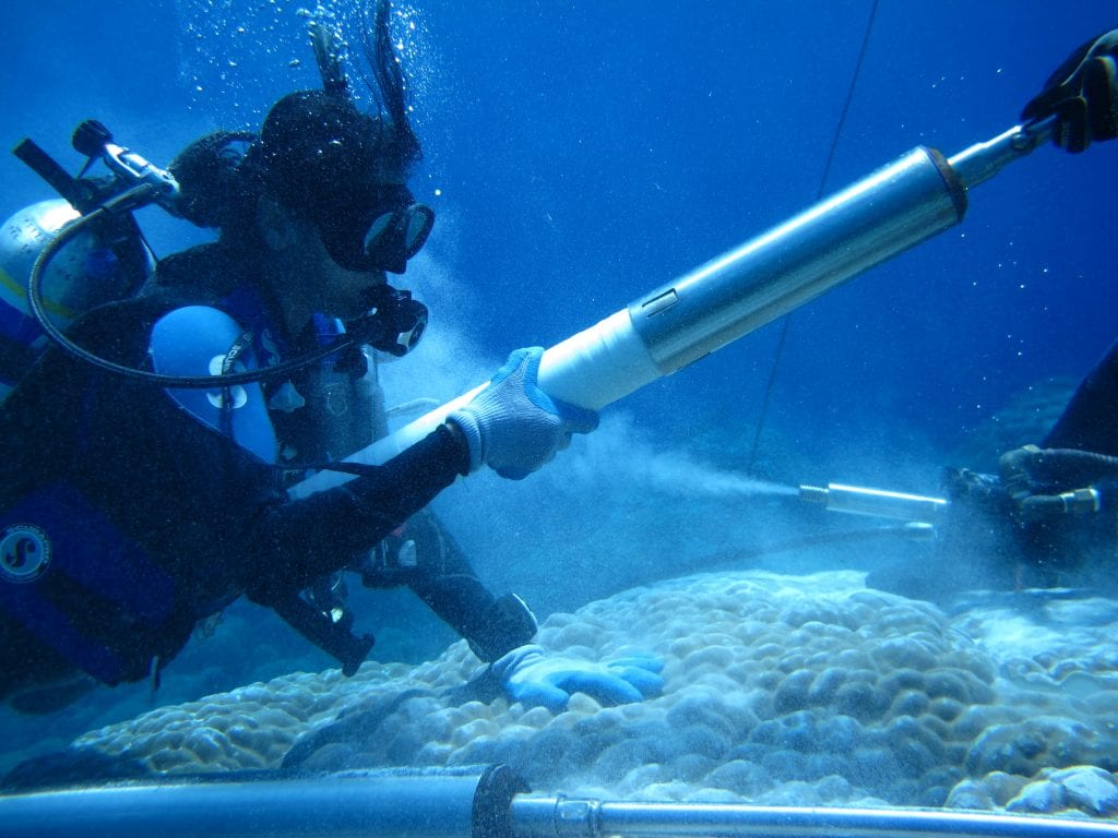 Co-author Sujata Murty retrieving a coral core piece during the underwater drilling process. Photo credit: Justin Ossolinski.