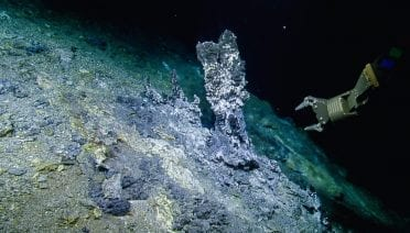 A view of the Apollo Vent Field at the northern Gorda Ridge, where samples were collected by the ROV Hercules for studying microbial predators.  Image credit: OET/Nautilus Live