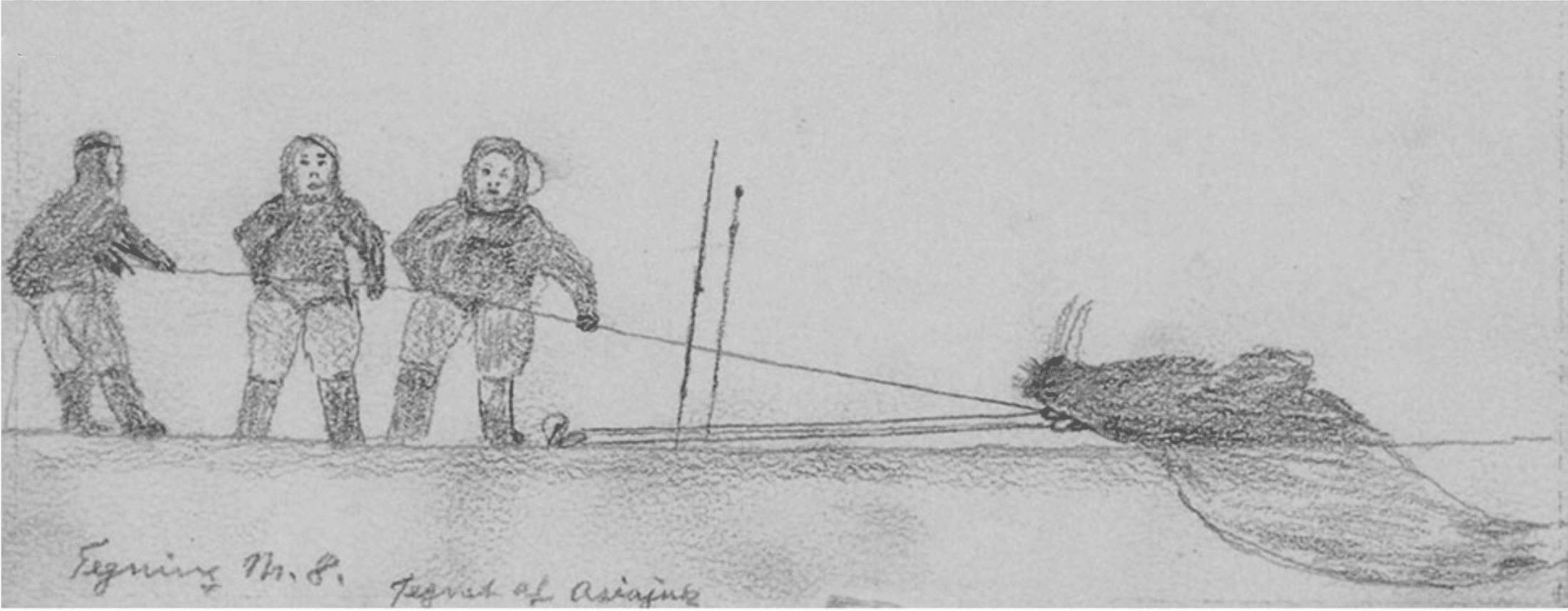 Walrus Hunting