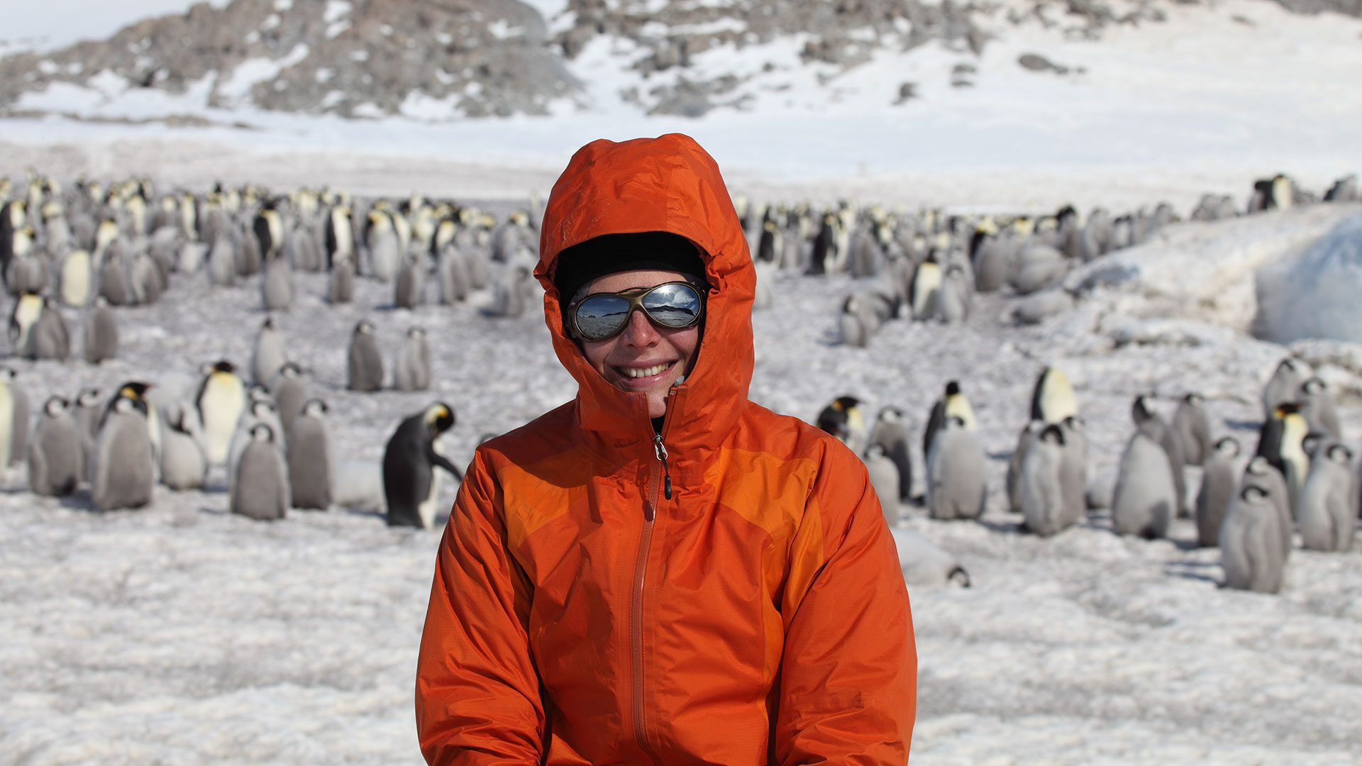 WHOI associate scientist and seabird ecologist Stephanie Jenouvrier working out in the field with emperor penguins. Research from penguin scientists is key to informing policy around much-needed protections for the emperor penguin.
