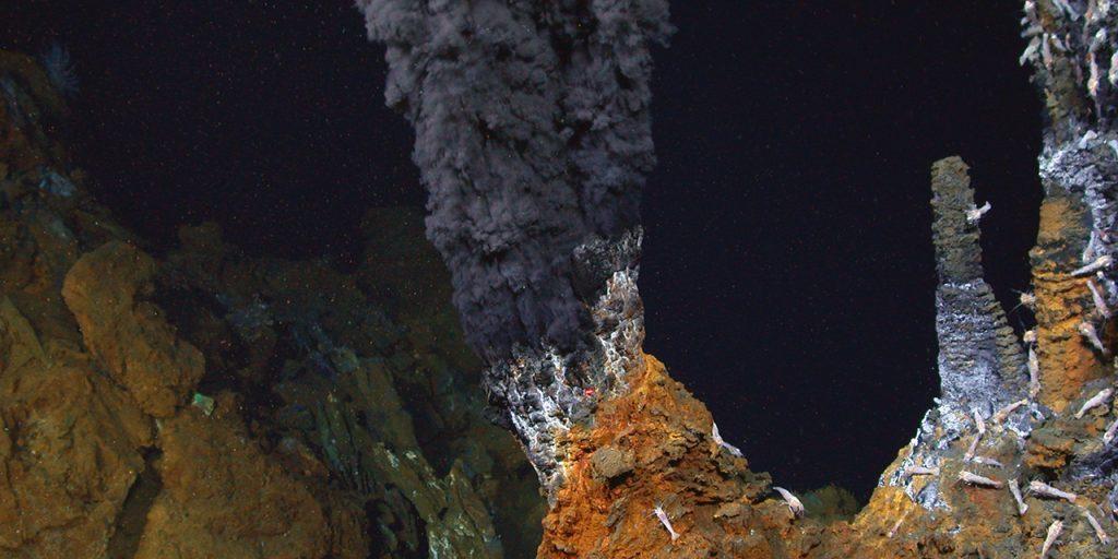 (Woods Hole Oceanographic Institution)
